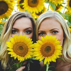 B Family Farm and Sunflower Field Portraits in Paris, KY by Simpson Photography