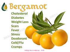 Bergamot Oil- right on thyroid. It also restores emotional balance. Its also called a natural prozac. It is often used in aromatherapy to address stress, fatigue, nervousness, anxiety, and digestive issues.* It may be blended with other essential oils such as lemon, grapefruit or mixed with floral scents such as rose and geranium.