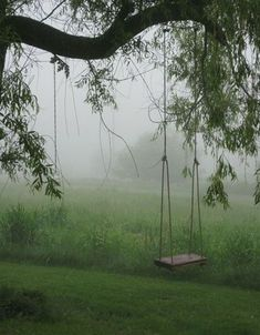 Tree swing- MUST have for our front yard!**** reminds me of my moms swing in her yard. Farm Life, Belle Photo, Country Living, Country Life, Country Farm, Wine Country, The Great Outdoors, Beautiful Places, Backyard