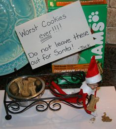 101 Elf on the Shelf Ideas Wish I had a dog lol