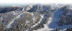 Become a ski or snowboard instructor in Romania http://www.oysterworldwide.com/gap-year/romania-paid-ski-season/
