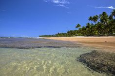 Taipu de Fora (Península de Maraú, Bahia): A praia de Taipu de Fora é considerada a mais bela do mun... - Fornecido por Pureviagem