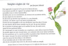 jacques salome - Recherche Google
