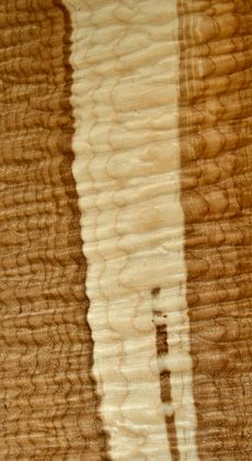 Quilted Big Leaf Maple log - the heart and sap combo is beautiful!