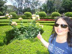 No jardim há belos canteiros de rosas, azaléia, buxo, além de palmeiras e pinheiros.