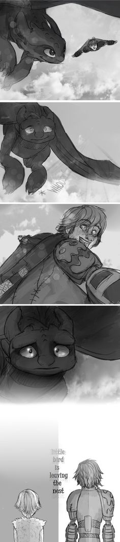HTTYD .:. Little Bird by sjsaberfan on deviantART:: Currently crying...and slightly dying
