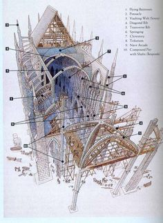 cross-section of a cathedral   cross-section.jpg: