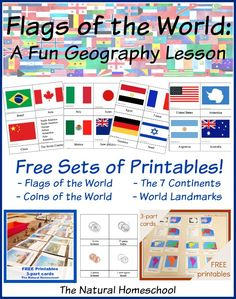 Flags of the World: A Fun Geography Lesson {Free Printable Sets}