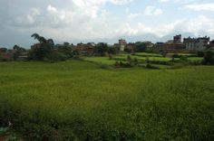 Clouds and the Himalayas, fields in the center of brick and concrete houses and barns of Pharping, Nepal