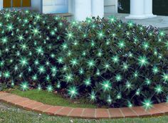 150 Count Green Mini Net Lights at Menards; $5.99 sale