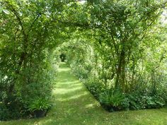 The Dower House Garden at Morville / Photos by The Dower House...