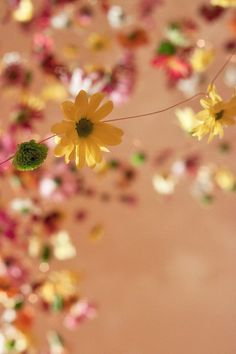 Stunning floral installation by Rebecca Louise Law at her new exhibition in London | Flowerona
