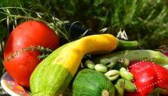 Legumes bio d'été à la plancha - Recette plancha