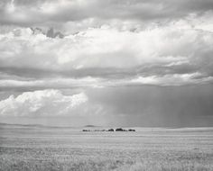 "Robert Adams: ""Ranch Northeast of Keota Colorado"", 1969, Gelatin silver print, 18,9 x 23,2 cm"