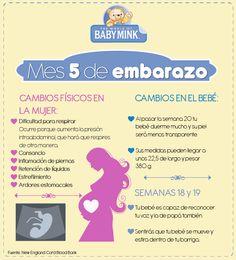 Cambios al quinto mes de #embarazo #maternidad #síntomas #maternidad