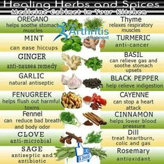 Excellent Benefits of Herbs And Spices