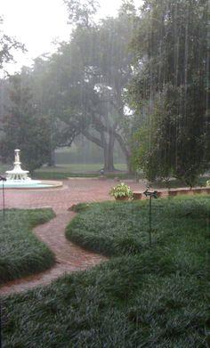 Joe Baker awaiting Hurricane Isaac, Longue Vue House and Gardens, New Orleans