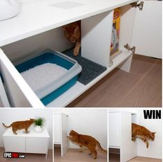 cat-litter-box...The link takes you to some funny pictures but I like this idea for a hidden cat litter box.