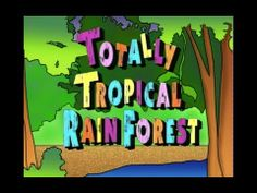 Watch a fun movie about the animals that live in the tropical rainforests. Perfect for all ages!