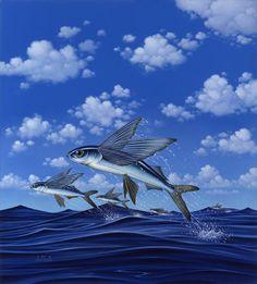 Braldt Bralds: Flying Fish