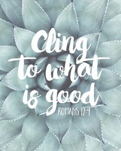 """""""Love must be sincere. Hate what is evil; cling to what is good."""" Romans 12:9 NIV"""