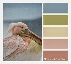 Colores pasteles