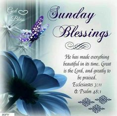 Happy sunday images with quotes: sunday quotes, happy blesse Blessed Sunday Messages, Blessed Sunday Morning, Sunday Morning Quotes, Sunday Wishes, Have A Blessed Sunday, Happy Sunday Quotes, Sunday Love, Blessed Quotes, Morning Blessings