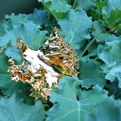 This 24K gold plated kale pendant necklace has a real piece of kale in there! It makes each piece unique -- don't just eat your veggies, wear them!