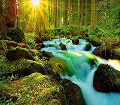 By Shanta Gabriel, Message from Archangel Gabriel for Day the Equinox AnusthanDear Ones,New levels of receptivity are opening to allow more Gra Famous Waterfalls, Largest Waterfall, Archangel Gabriel, Kerala Tourism, Tourist Places, Travel Companies, Vacation, Nature, Outdoor