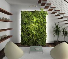 If you have enough light but no outside space, you can still enjoy a living wall.