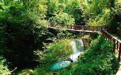 Νάουσα Ημαθίας: φυσικές ομορφιές σε μια πόλη με θέα | Ταξίδι | click@Life Macedonia, Garden Bridge, Cool Photos, Aquarium, Greece, Waterfall, Europe, The Unit, Outdoor Structures