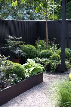 Excellent Gardening Ideas On Your Utilized Espresso Grounds Contemporary Black Fencing In A Lush Green Garden Malmo Garden Show 2017 Purple Area Ab Black Garden Fence, Garden Fencing, Green Garden, Black Fence, Garden Privacy, Potager Garden, Privacy Fences, Privacy Screens, Small Backyard Gardens