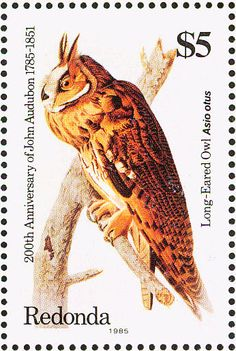 Long-eared Owl stamps - mainly images - gallery format