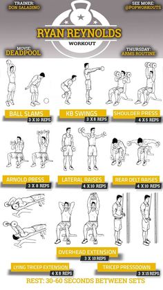 Arms Workout Plan: A Primer – Lasting Training dot Com Pop Workouts, Chest Workouts, Fitness Workouts, Fitness Tips, Fitness Studio Training, Cardio Training, Weight Training, Gym Routine, The Rock Workout Routine