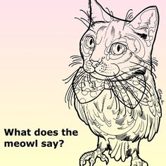 Just 5 days left to order your meowl tee! Exclusively designed by tattoo artist @kshocs to raise funds in support of @bestfriendsanimalsociety. Go to Teespring.com/Meowl ❤️ Go ahead and be a bit weird, kinda like a meowl. #cattoo #tattoo #hoot #meow #meoot #heow #meowl