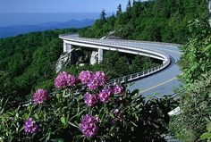 10 great all-American road trips  Blue Ridge Parkway  North Carolina and Virginia    Connecting two national parks—Shenandoah in Virginia with the Great Smoky Mountains in North Carolina—the Blue Ridge Parkway traverses 469 miles through blue-misted Appalachian highlands. Take in forest-blanketed mountain vistas, ripe for fauna (look for bear, deer, and beaver) and flora viewing ..,