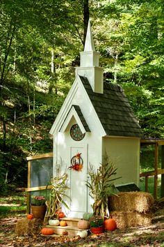 Southern Living chicken coup💕💕💕