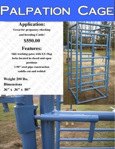 cattle palpation cage
