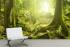 Green Jungle Mural Wallpaper