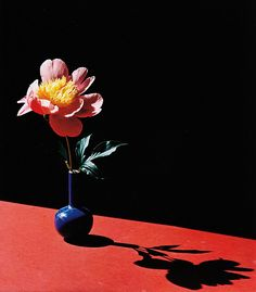 Horst P. Horst, Peaony in a blue vase, 1986
