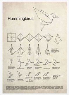 HUMMINGBIRDS & ORIGAMI