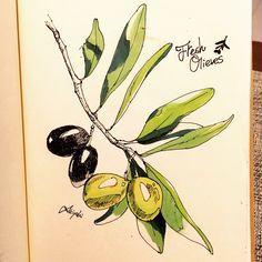#illustration #artist #art #drawing #artwork #animal #olives #sketch #イラスト #アート