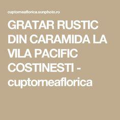 GRATAR RUSTIC DIN CARAMIDA LA VILA PACIFIC COSTINESTI - cuptorneaflorica