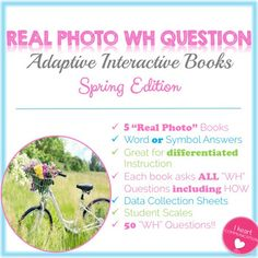 INTERACTIVE SPRING B