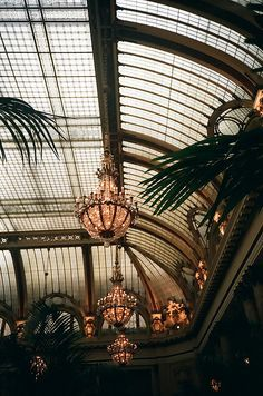 Old conservatory garden aesthetic Palace Atrium Atrium, Beautiful Architecture, Architecture Design, Conservatory Garden, Victorian Conservatory, Palace Garden, Glass Ceiling, Old World, Aesthetic Wallpapers