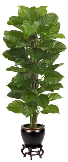 Large Leaf Philodendron Silk Plant and Fishbowl Planter