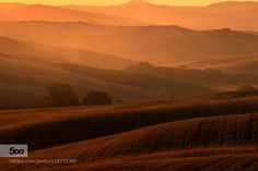 Tuscan summer by gpiotr205  Tuscan summer countryside field fog gold golden hour haze hills italia landscapes italy panorama pie