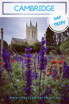 These are some of the best day trips from Cambridge. There are great days out near Cambridge. Some within 1 hour of Cambridge and some that are further. Travel With Kids, Family Travel, Thetford Forest, Bury St Edmunds, Liverpool Street, Family Days Out, Local Attractions, Travel Usa, Travel Europe