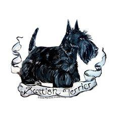 Scottish Terrier Style