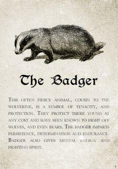 https://i.pinimg.com/236x/d2/1a/8e/d21a8ec824ce7049faa5c03e20d2cba9--hufflepuff-badger-hufflepuff-pride.jpg